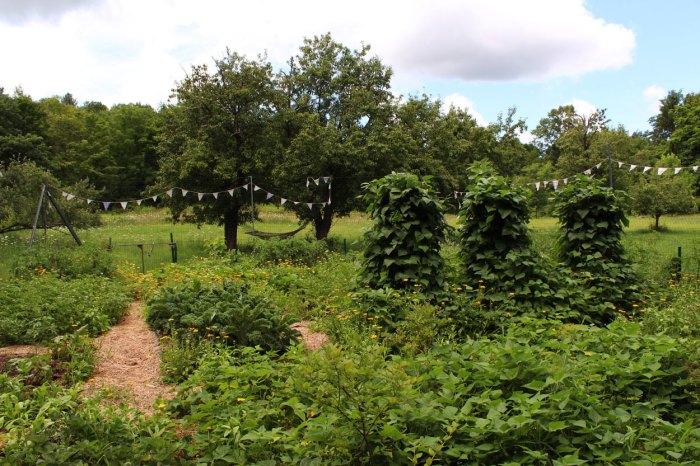 west-garden-2