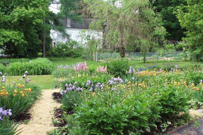 flower-garden-2
