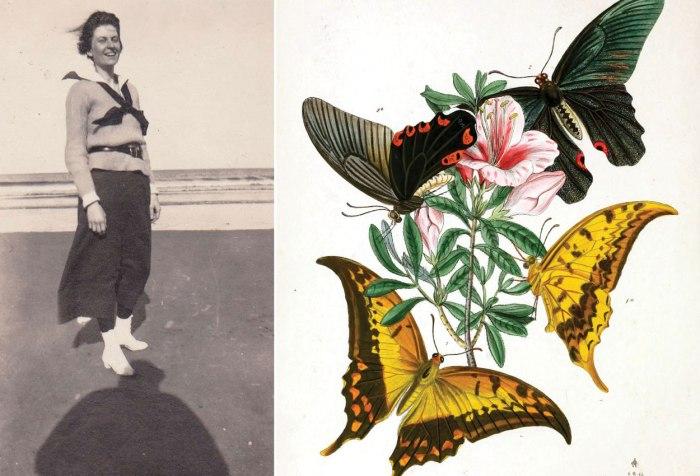 margaret-butterfly